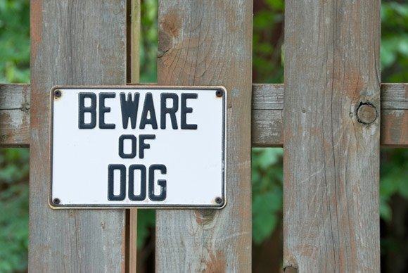 Beware of dog bites and protect yourself legally