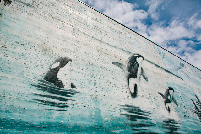 Tacoma Robert Wyland Whale Mural