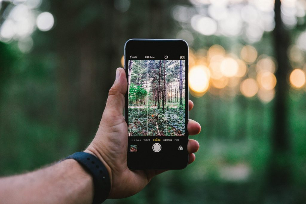 Person holding iPhone in the woods